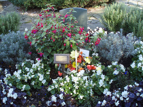 Memorial Garden: Note The Brass Plaque In Memorium Of A Departed Love One  As Well As The Beautiful Arrangement Of Flowers And Plants.